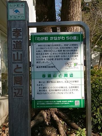 かながわ50選孝道山