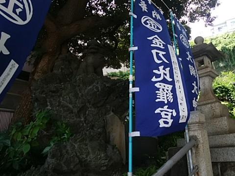 大綱金刀比羅神社狛犬