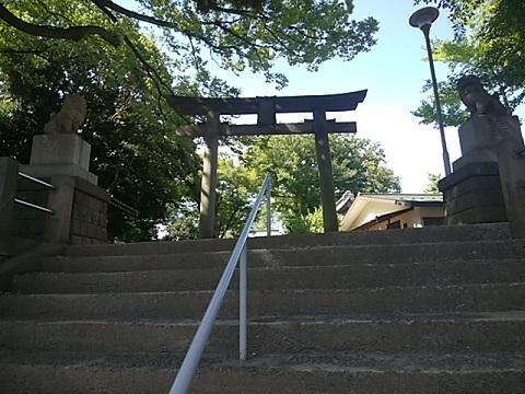 白幡八幡神社狛犬
