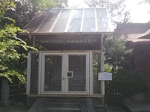 稲毛神社子神社