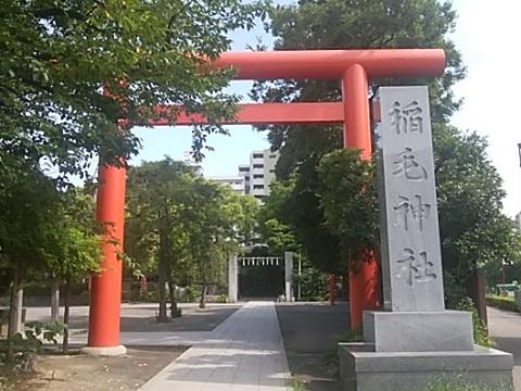 稲毛神社鳥居