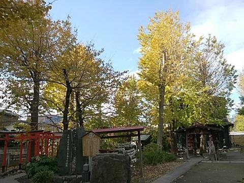 若宮八幡神社イチョウ