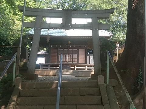 青砥杉山神社鳥居・狛犬