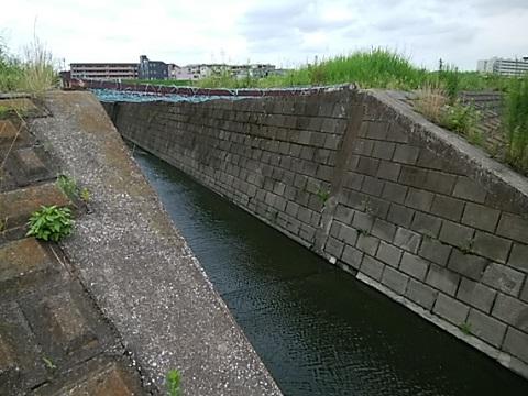 多摩川との合流点