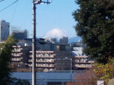豊顕寺市民の森富士山