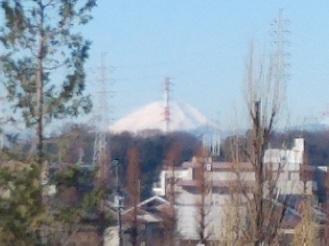 早淵川新川橋富士山