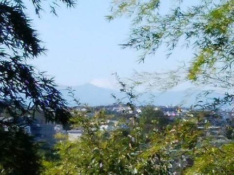 日向山富士山