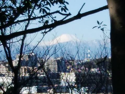 日吉本町3丁目富士山