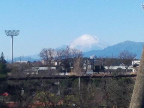 三ッ沢公園の畑富士山