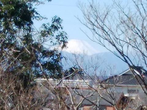 師岡町公園富士山