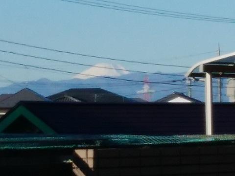 野川第二公園の富士山