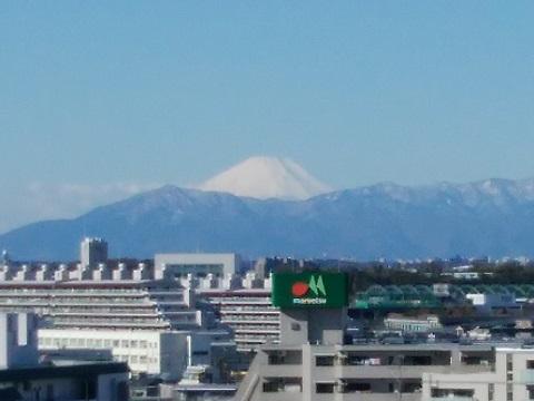 大豆戸堀上公園富士山