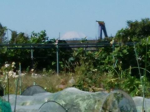 新作小学校付近富士山