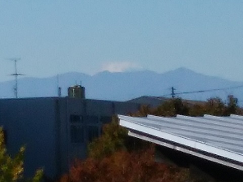 菅生緑地付近(横浜市境)