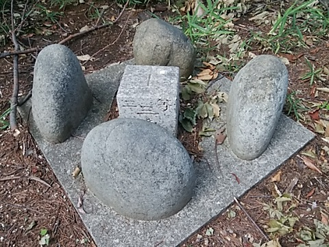 鷺沼北公園