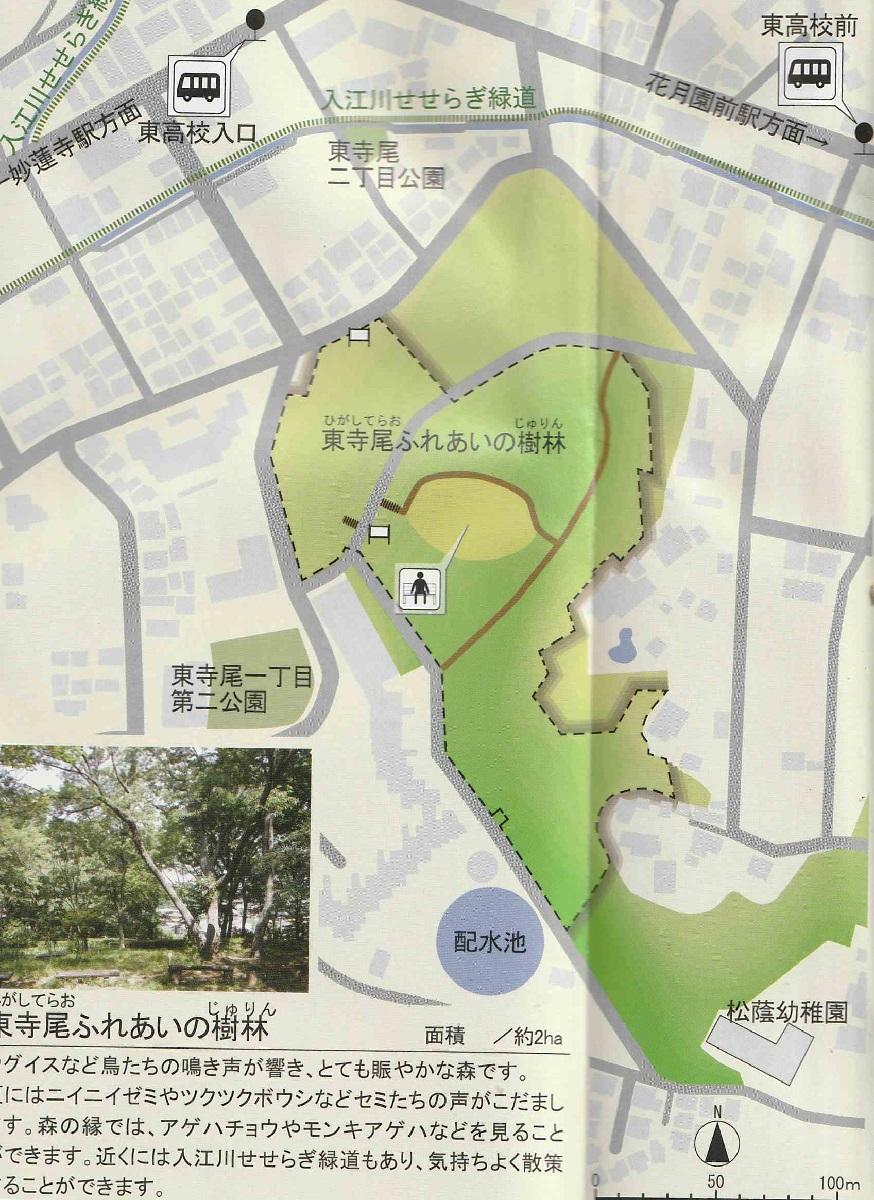 東寺尾ふれあいの樹林