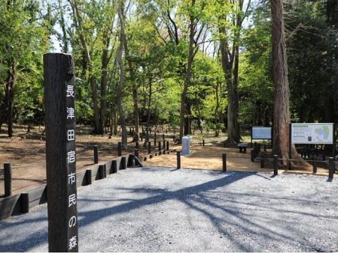 長津田宿市民の森