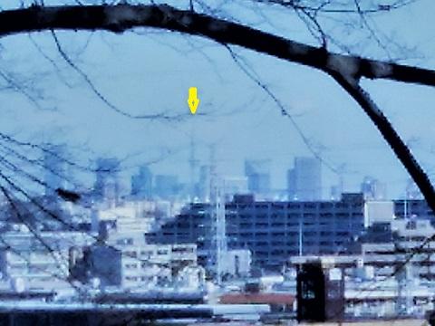 春日台公園