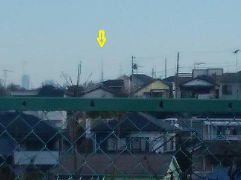 野川南の高台