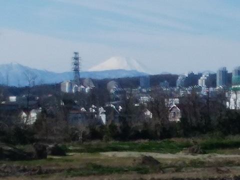 府中市押立町5丁目土手富士山
