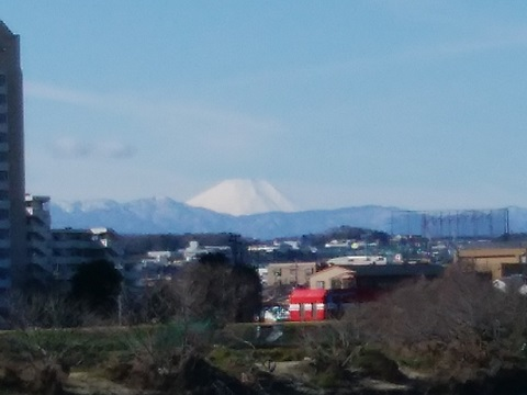 狛江市元和泉2丁目土手富士山