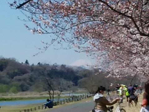多摩川郷土の森公園富士山