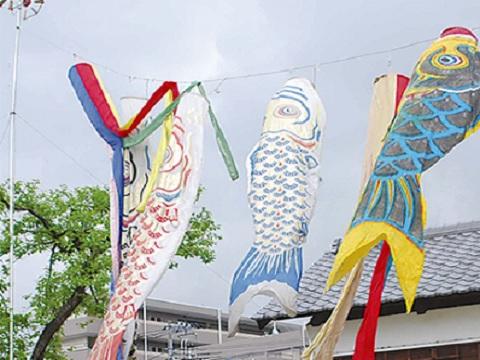 久本薬医門公園の鯉のぼり
