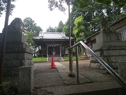 佐江戸杉山神社狛犬