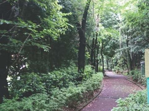 島田成長の森
