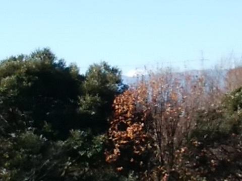茅ヶ崎中央公園富士山