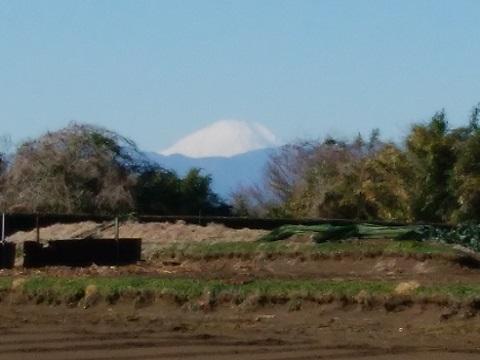 東方町の高台富士山