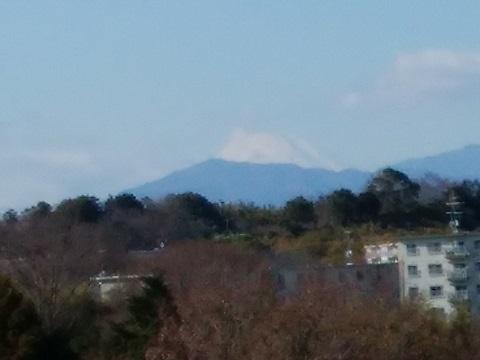 鴨居原市民の森富士山