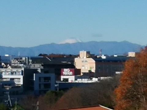 横浜国際プール富士山