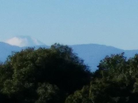 栗木緑地富士山