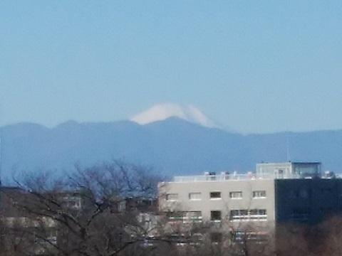 桝形山展望台富士山