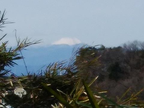 長尾神社富士山