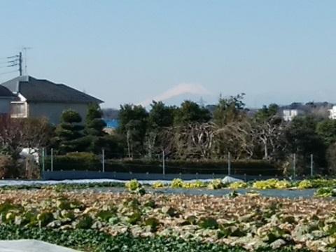 菅田神明神社富士山