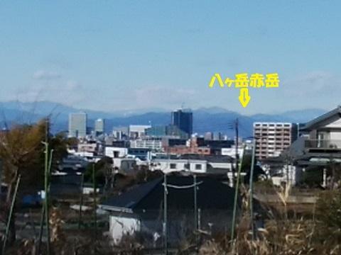 高尾山八ヶ岳
