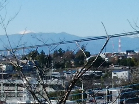 高津公園富士山