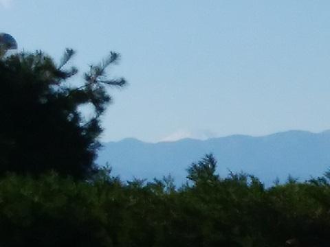 田奈町の高台富士山