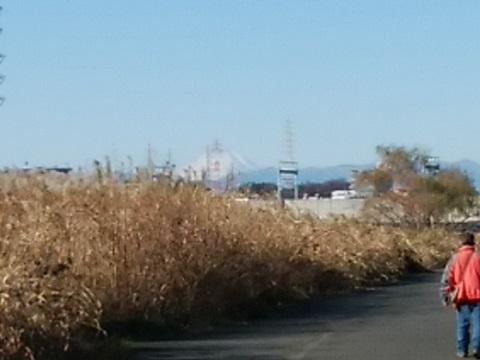 樽綱橋富士山