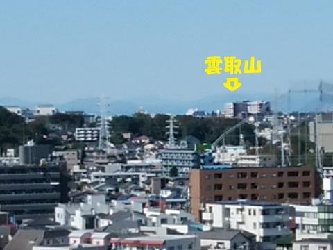 夢見ヶ崎動物公園雲取山