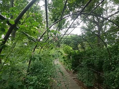 緑化センター萩