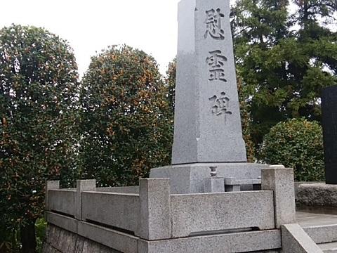 橘樹神社キンモクセイ