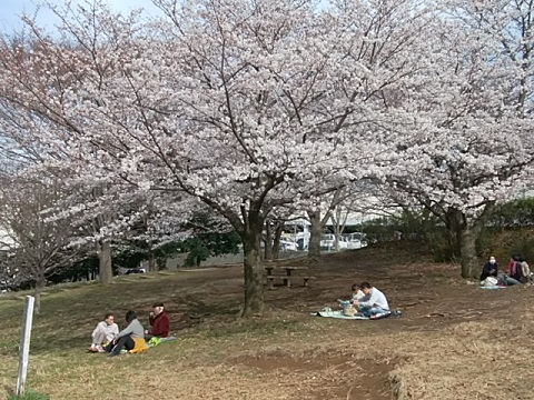 片倉うさぎ山公園