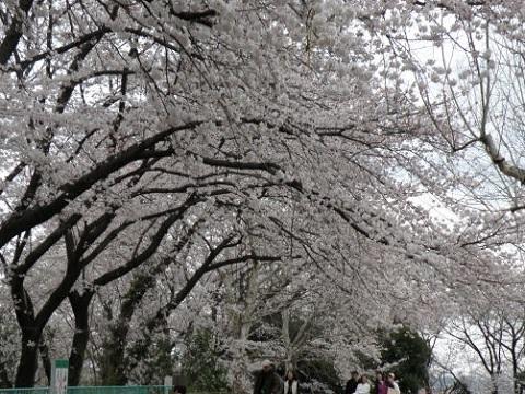 大曽根台第3公園