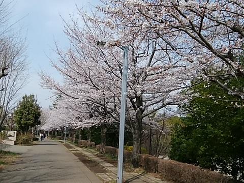 東山田中学校前