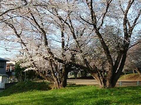 川和八幡神社