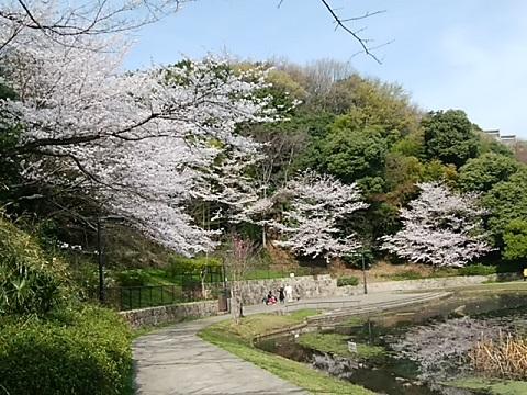 山田富士公園