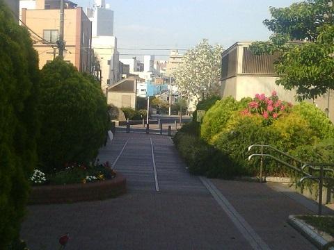 東横フラワー緑道